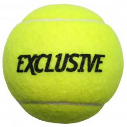 Exclusive tréninkové tenisové míče  - zvětšit obrázek